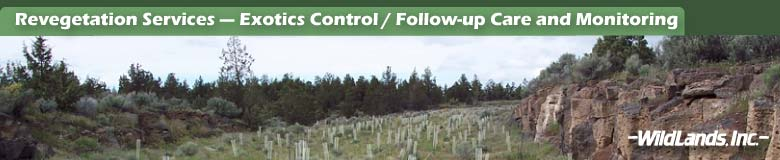 Erosion & Exotics Control / Monitoring & Follow-up Care